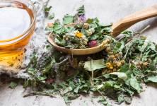 Přírodní lékárnička: Léčivé květy a listy červnových bylinek