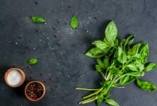 Bazalka: Jak ji využít při vaření a uchovat její voňavé listy co nejdéle?